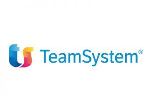 Team System